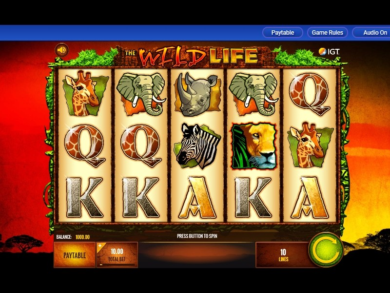 The Wild Life Free Slots